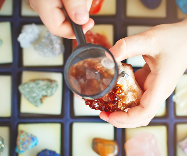 Child holding a mineral in his hand while he looks closely using a magnifying glass over a case full of other minerals